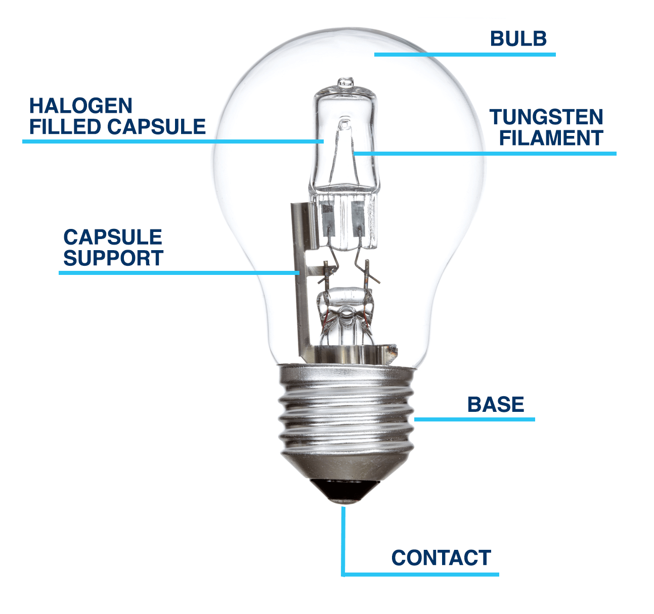 halogen bulb diagram