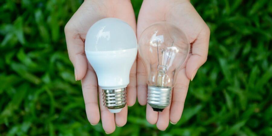 Light Bulb Comparison Guide